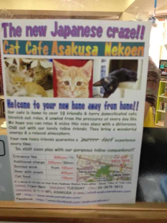 Cat Cafe Asakusa